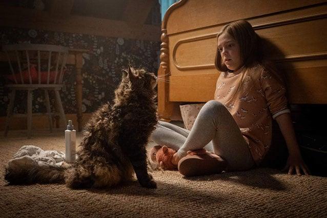 pet sematary trailer 2019 movie synopsis