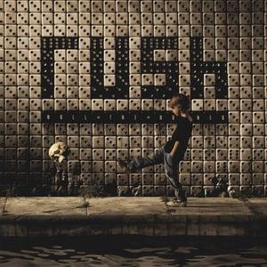 Rush Roll The Bones Cover